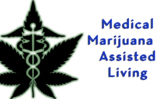 Medical Marihuana Marijuana Assisted Living legal implications probate law elder