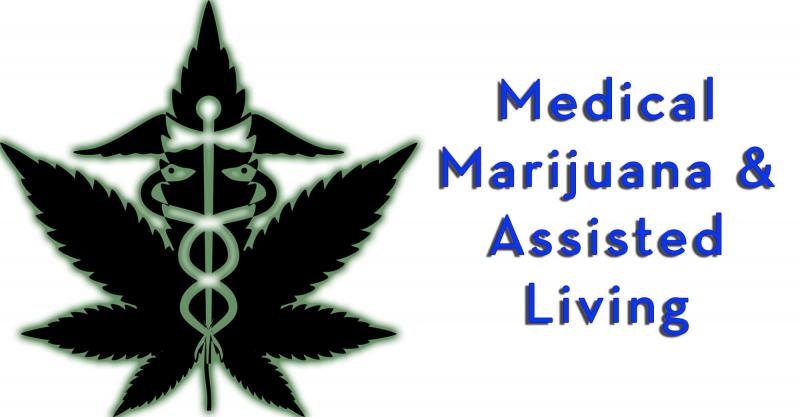 Medical Marihuana Marijuana Assisted Living legal implications probate law elder