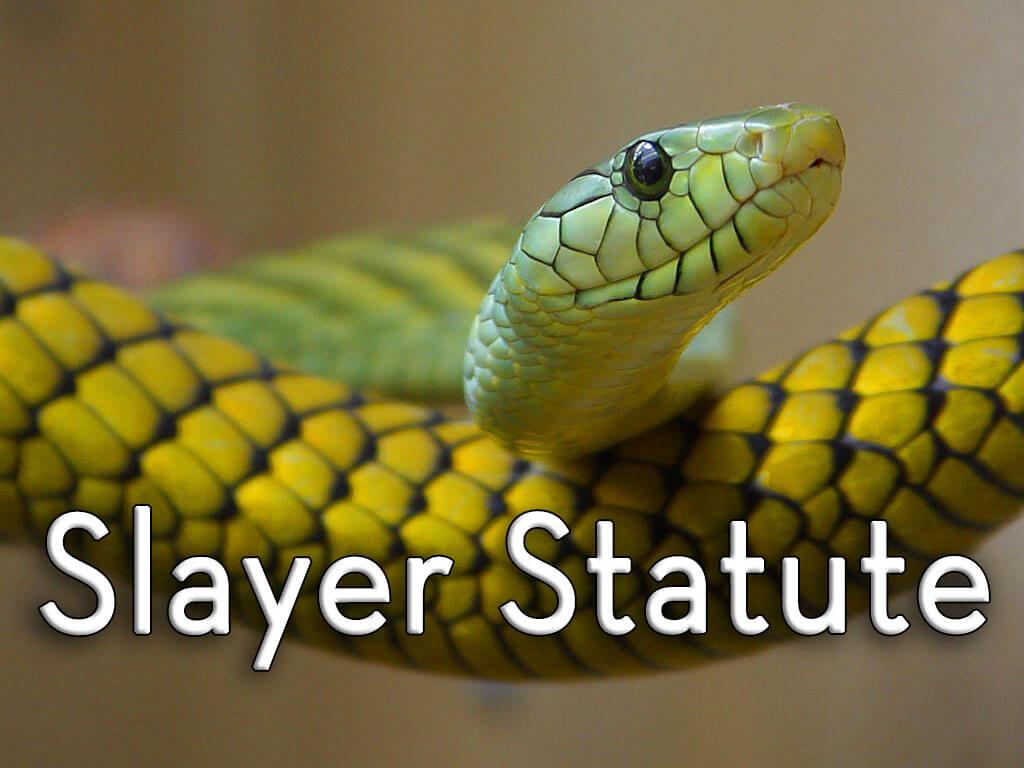 the probate pro slayer statute rule law firm court killer estate benefit assets