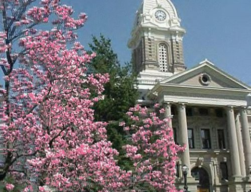 Important info about Ingham County Probate Court
