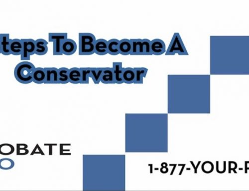 Five Steps To Become A Conservator